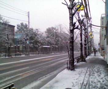 かなりの積雪